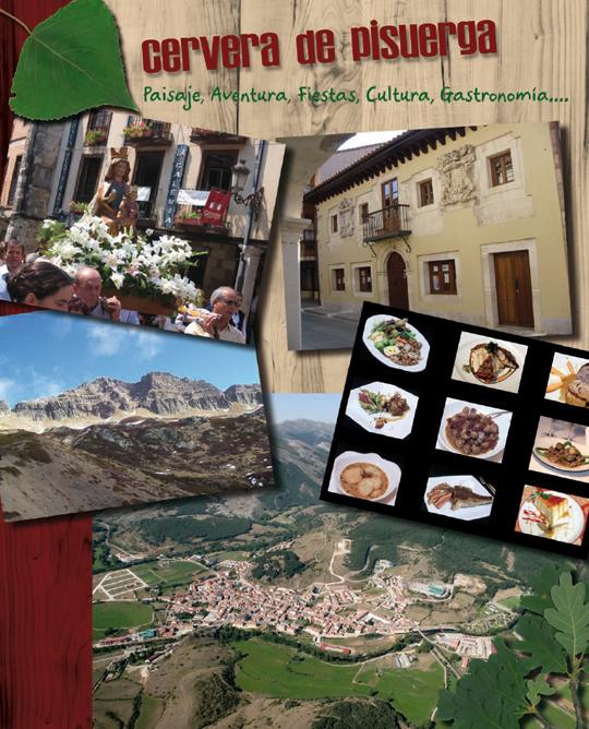 Programa de Fiestas de Nuestra Señora del Castillo y San Roque 2011